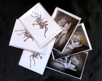 Stephen cards pack of 6 , horror card, fantasy card, monster card, halloween card, blank card, black and white card, art card, horror art