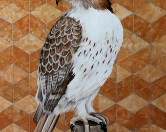 Red Tailed Hawk Copper Pattern Fine Art Original Painting