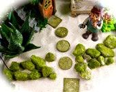 Stepping Stones for Miniature Garden Walkway ~ 5 Stepping Stones ~ Resin Celtic Stepping Stones or Wooden Circles ~ Fairy Garden Supply