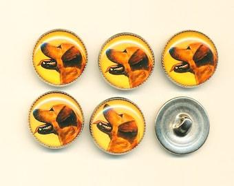 Vintage Yellow Labrador Retriever  Dog Buttons - Set of 6 ca.1990's