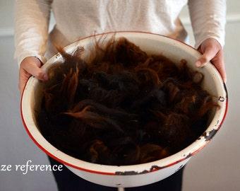 Raw Navajo-Churro Fleece, black, beautiful, freshly, professionally sheared