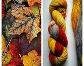 Autumn Leaves: hand dyed variegated Merino sock yarn by Star Fiber Studio