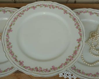 Antique China Rose Plate Set From Vienna - Vintage Shabby Chic Wall Art + Home Decor, Fine Serving China, 3 Matching Vienna Austria Plates