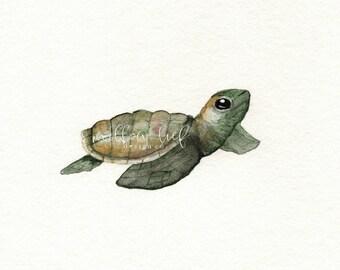 Turtle art, turtle watercolor, turtle painting, Green Baby Loggerhead Turtle, Watercolor Print