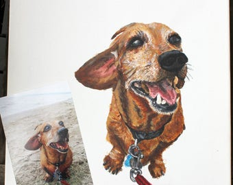 Custom Pet Portrait (plain background)
