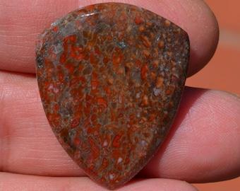 Dinosaur bone Guitar Pick - Large Prehistoric Fossil Plectrum D-17-28