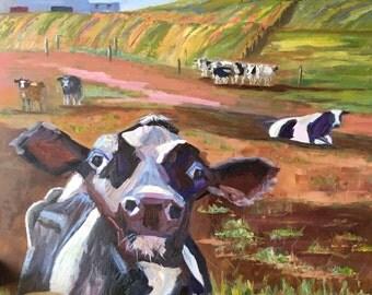 Curious Cow Original Oil Painting / 36 x 36 / Pennsylvania Farm Landscape
