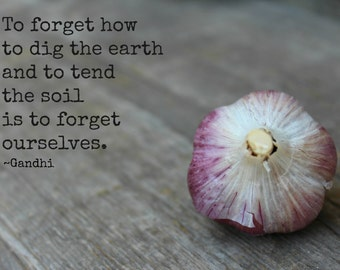 To forget how to dig in the earth - Gandhi Quote - Print - 5X7