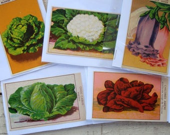"""Vintage SEED PACKET LABELS from France- 1920s Unused """"New Old Stock""""- Choose your Vegetable or Flower Style"""