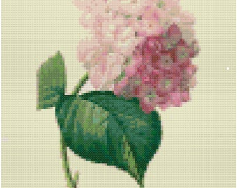 Vintage Hydrangea Botanical Cross Stitch Pattern, Digital Download PDF