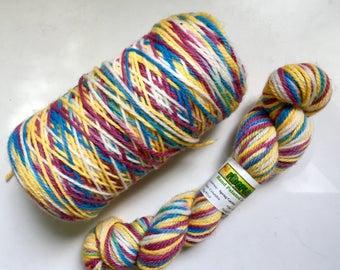 12 oz Beautiful Hand Dyed Wool Worsted Yarn Spring Garden 560 Yards