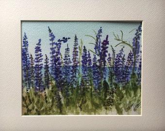 Lupine in bloom wild flowers Lake Tahoe California 8 x 10  Watercolor print