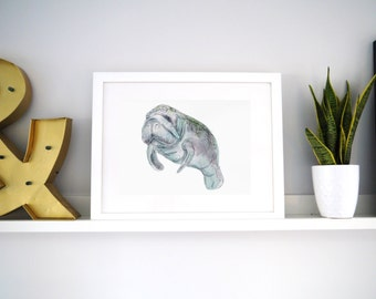 Print -Manatee- Watercolour and ink Manatee illustration archival print