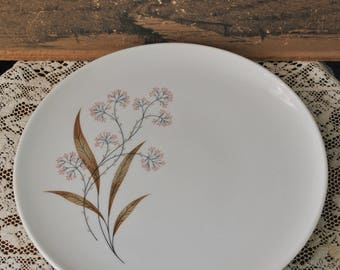 Vintage Windswept Syracuse China Plates