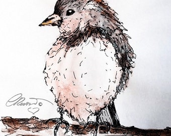 Watercolor Bird, Limited Edition Fine Art Print, Bird Painting, California Bird, Watercolor Finch Bird, Bird Illustration, Bird Ink Drawing