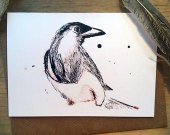 Magpie Bird Greetings Card Hare Raising Designs