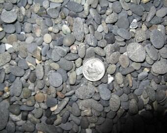 4 lbs. Medium Fine  Beach Pebbles, Project Pebbles, Wedding Decor, Craft Pebbles, Aquarium Rock, Fine Craft Stones
