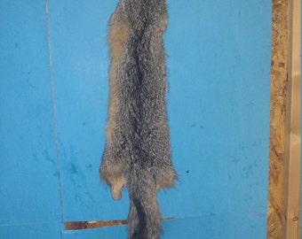 real animal tanned gray fox skin pelt hide fur rug taxidermy leather