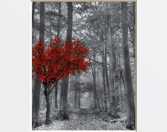 Black White Red Wall Pictures, Tree Forest Decor, Red Gray Home Decor Wall Art Matted Picture