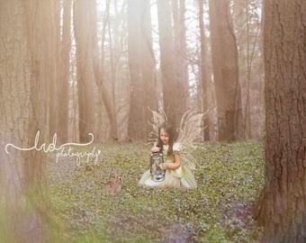 Digital Backdrop/Fairy Tale Forest/prop