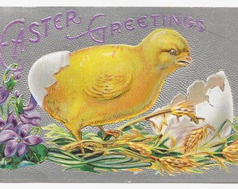 Break Out Chick Easter Postcard, 1910