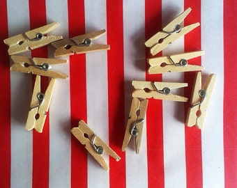 Wood pegs 25 mm 24 pieces