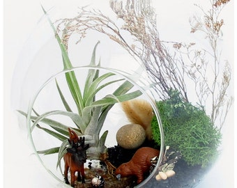 Unique Birthday Gift, Enchanted Animals Air Plant Terrarium ~ Glass Globe Ornaments For Dad Son Uncle Grandpa Doctor Fireman Home Office