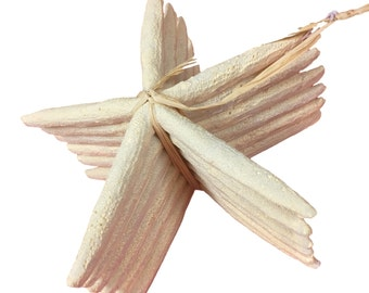 "White Finger Starfish 8"" Star Fish Set of 6 Replica Perfect for Walls or Wreaths"