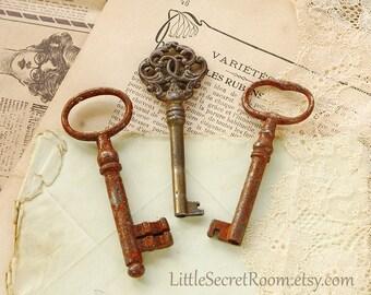 Set Vintage Key, Rusted old Skeleton key, Patina, Antique keys