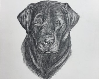 Black Lab Drawing - Needs a Home, Make an Offer :)