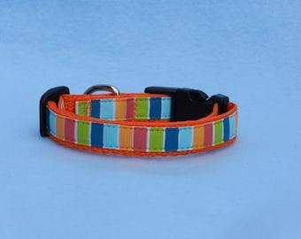 XS Striped Dog Collar