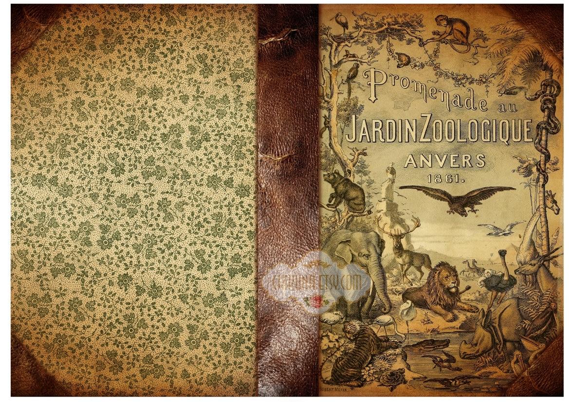 Book Cover Art Etsy : Jardin zoologique printable download digital collage