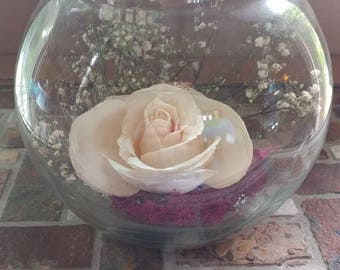 White preserved rose in glass globe