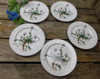 """Set of 5 Vintage Villeroy & Boch Botanica 8 1/4"""" Salad Plates"""