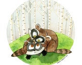 RACCOON Canadian Baby Ani...