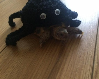 handmade crochet spider tortoise cosy sweater outfit photo props