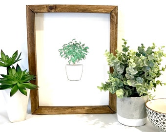 Greenery Plant Art - Framed Plant Art - Rustic Modern Greenery - Rustic Modern Art - Hand Drawn Plant - Pantone Color of the Year Greenery