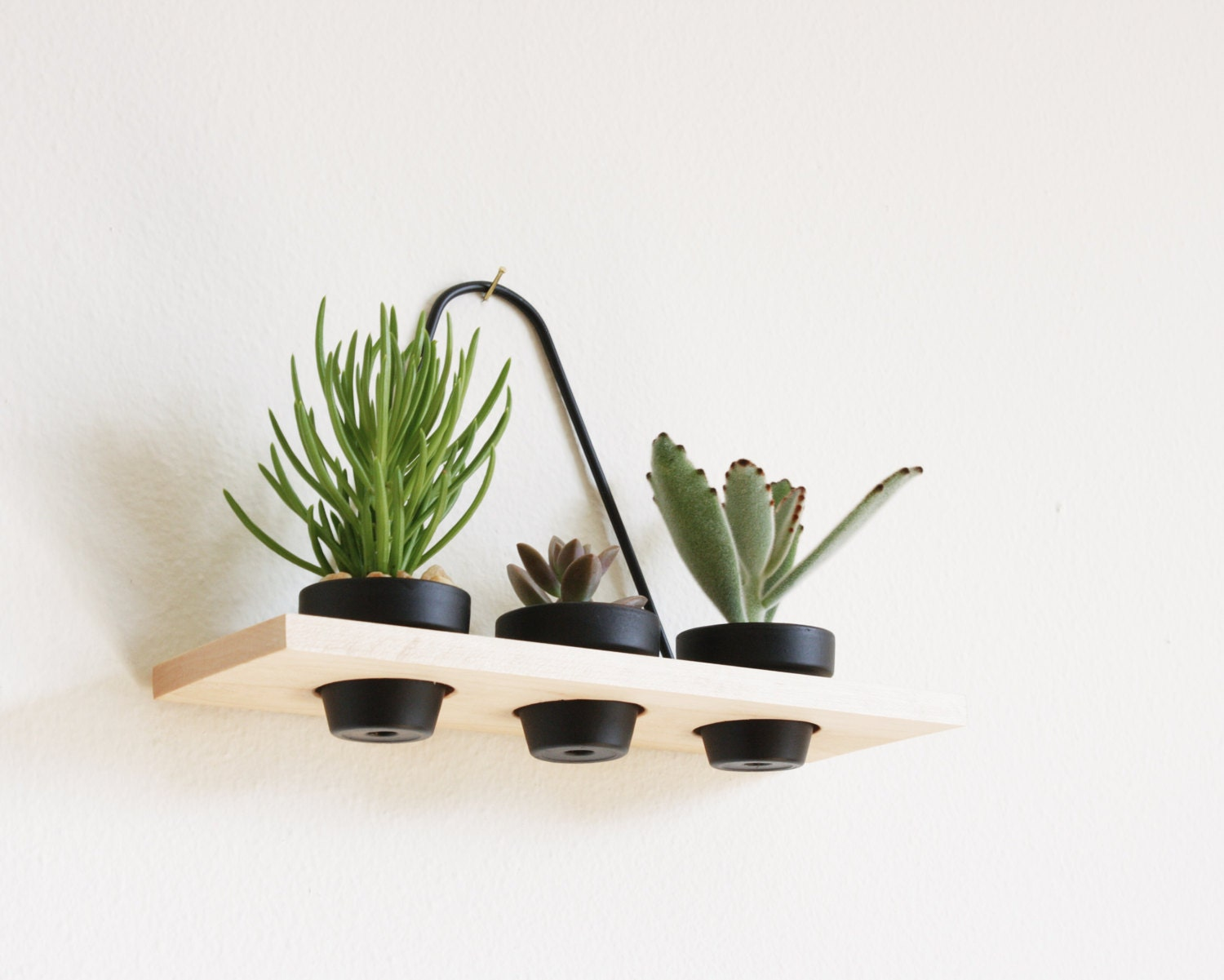 Modern Hanging Wall Planter Maple 3 Pots