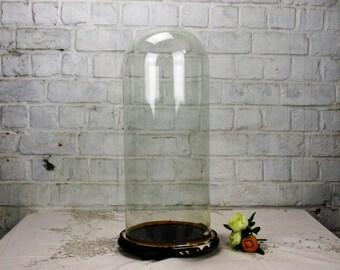 "Antique Victorian Round Hand Blown Glass Globe Dome Taxidermy Steampunk 20.07"""