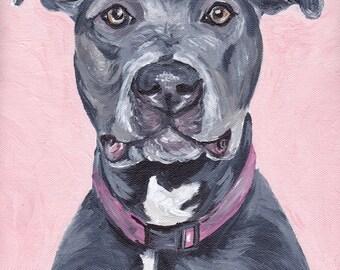 Pit Bull art print from original pit bull painting