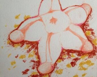 Plump Starfish