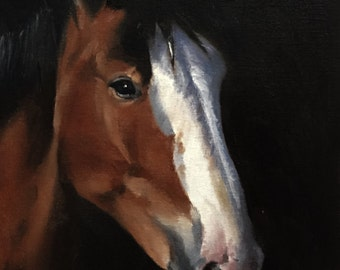 Horse Painting Horse Art PRINT Portrait Horse - Art Print - from original painting by J Coates