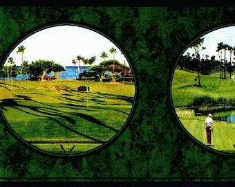 Golf SC4162B Wallpaper Border
