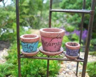 Fairy Garden  - Mini Pots Set of 3 - Miniature
