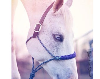 Breakaway Rope Halter • Mighty Fine Equine Original Design