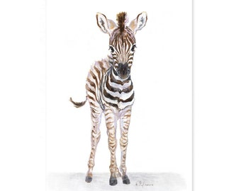 Zebra nursery print - Giclee - Baby Animal Print - Zoo Nursery Print  -Safari Nursery Art - Baby Zebra Print - African Animal Art