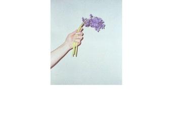 Gratitude. Flower portrait.