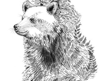 Mini-Print, Bear in Forest, 12,6x17,9cm, pencil drawing, 300 g paper