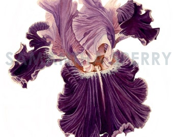 """Watercolor Flower 