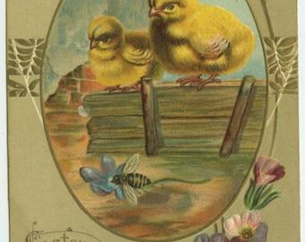 Easter Greetings Chicks Watching Bee on Violet c1910 Embossed Postcard
